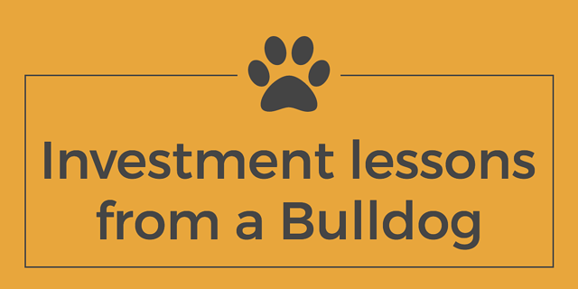 investment-lessons-from-a-bulldog.png