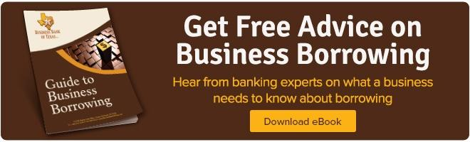 Ebook on Business Borrowing